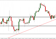 EUR/USD on trend line. Everyone is waiting for more bearish moves but there will be no more down trend?